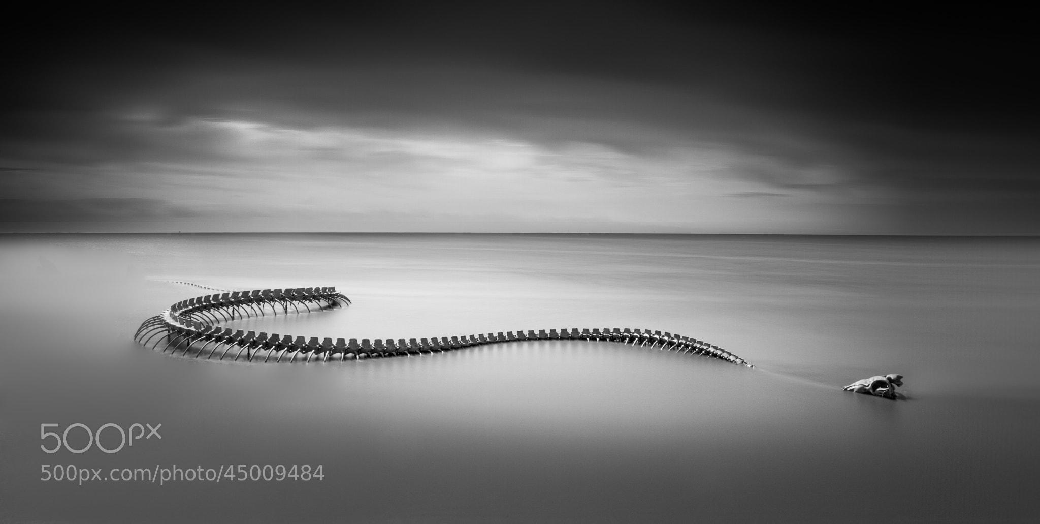 Photograph Serpent d'Océan by Emmanuel LE GUELLEC on 500px