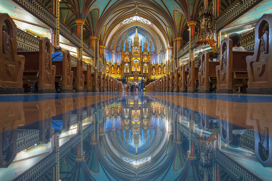 Photograph Basilique Notre Dame by Naibank Eng on 500px