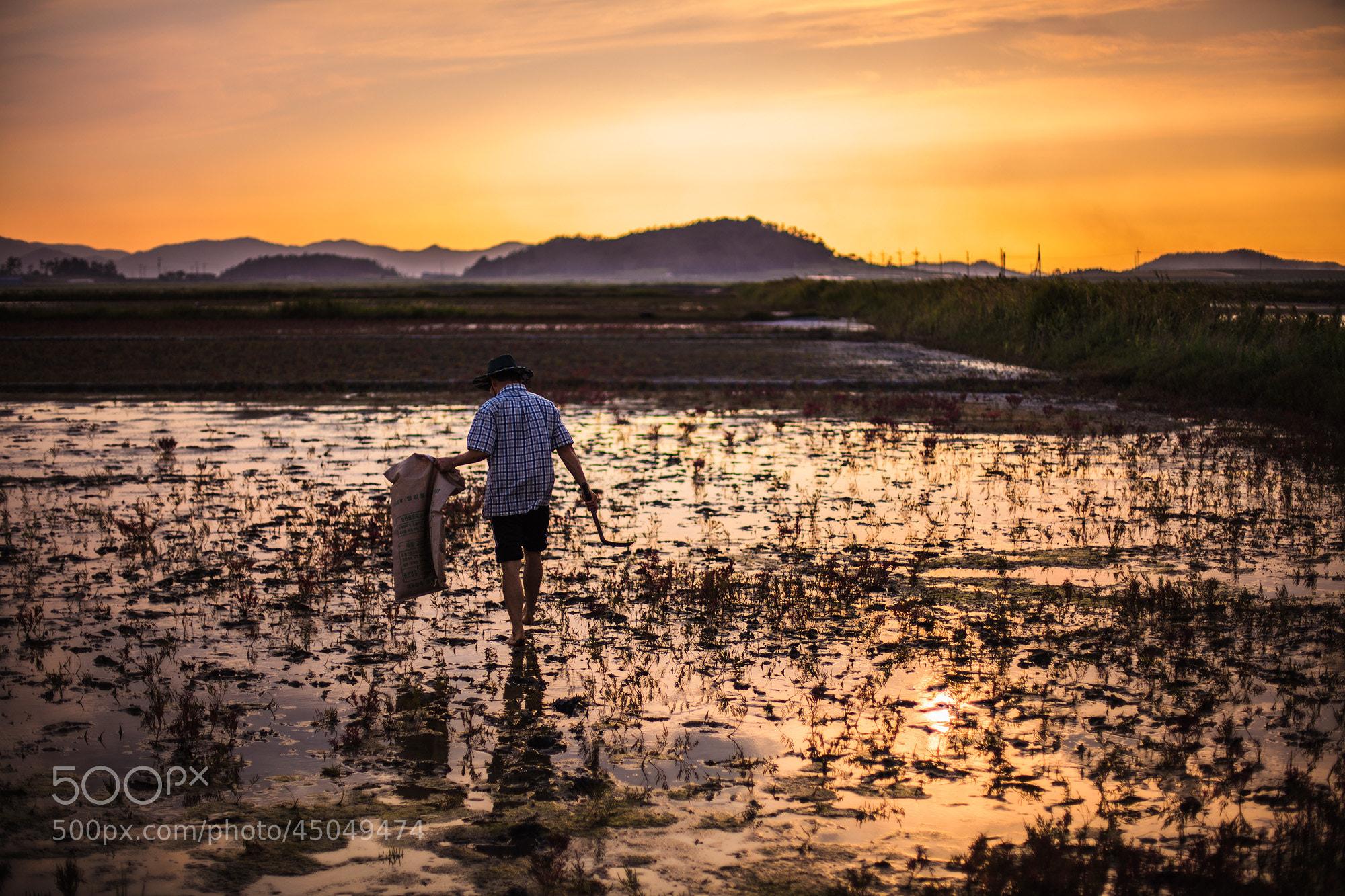 Photograph sunset saltern by kim chaejin on 500px