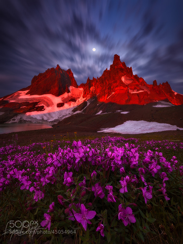 Photograph The Torch by Ryan Dyar on 500px