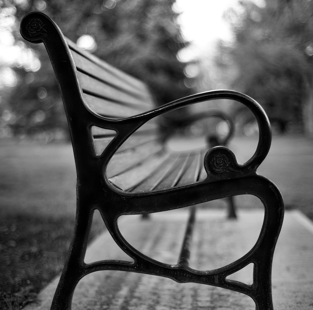 Photograph Park Bench by Chad Galloway on 500px