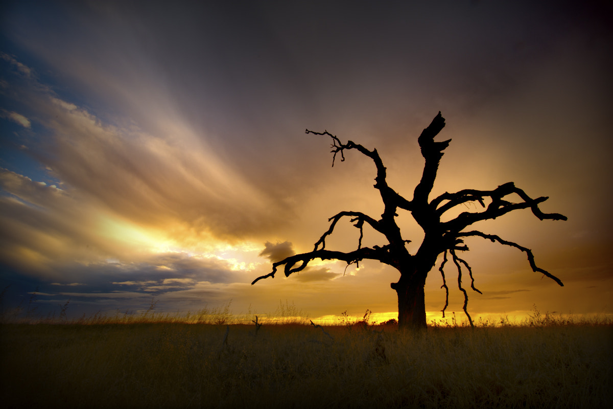 Photograph Spooky... by Dustin Penman on 500px