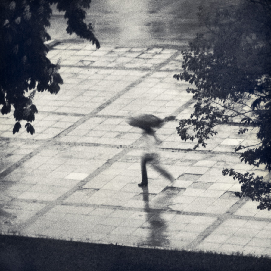 Photograph Left Alone To Disappear In Rainy Day by Plamen Valchev on 500px