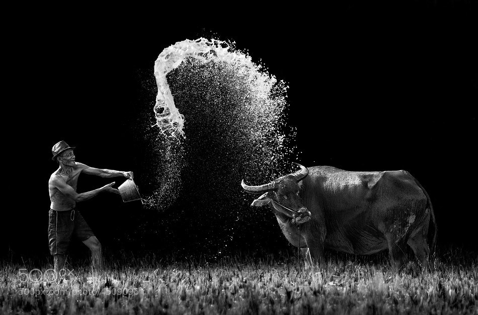 Photograph Joyfull (Full Version) by Ario Wibisono on 500px
