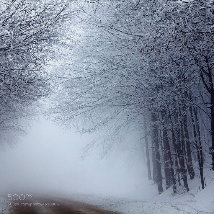 Photograph Lost Way by Evgeni Dinev on 500px