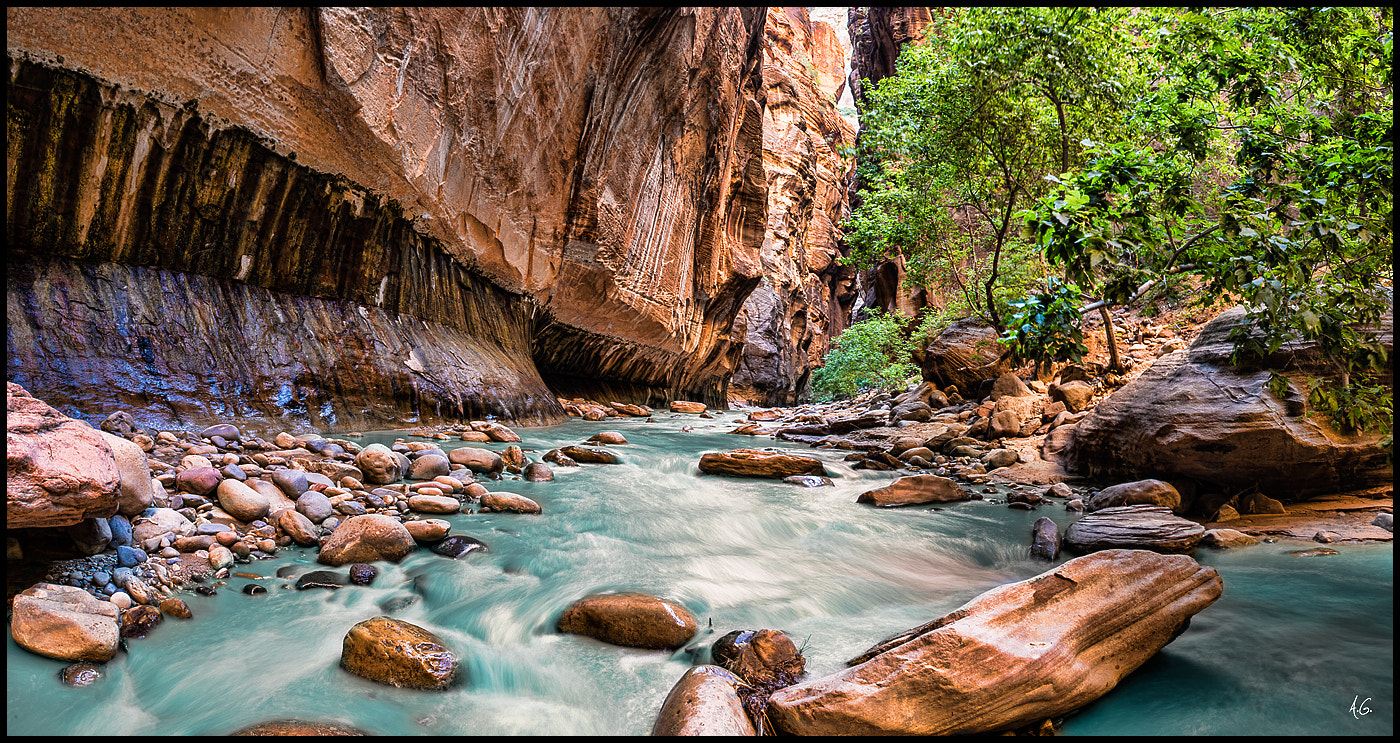 Photograph Zion Narrows by Alex Gubski on 500px