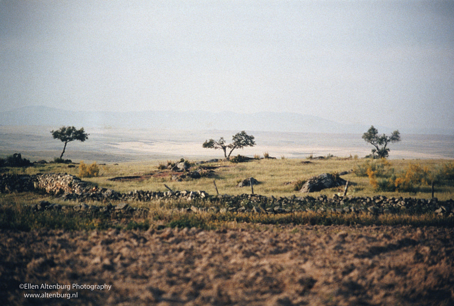 Transhumance - View on Portugal by Ellen Altenburg on 500px.com