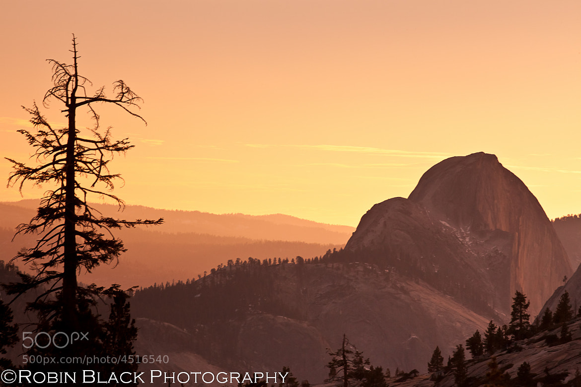 Photograph Winter Sunset and Profile of Half Dome from Olmsted Point by Robin Black on 500px