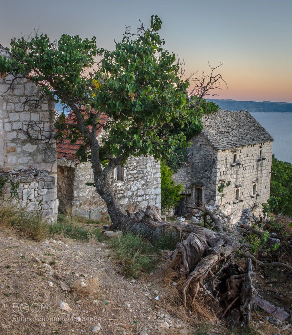 Photograph Old Dalmatian Village by Stevan Tontich on 500px