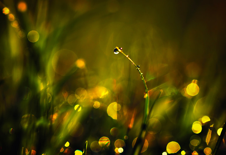 Photograph night lights by Beauty  on 500px