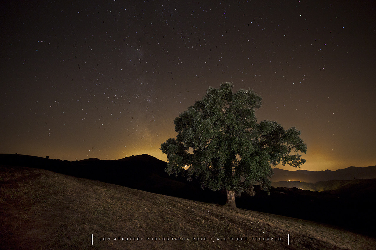 Photograph THE HEAT OF THE NIGHT by Jontake . . on 500px