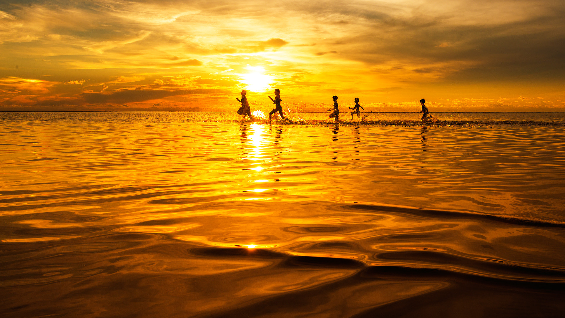 Photograph Running in The Sea of Gold by Esmar Abdul on 500px