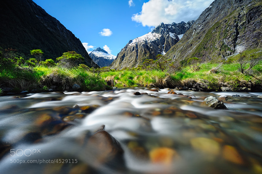 Photograph @Monkey creek by AtomicZen : ) on 500px