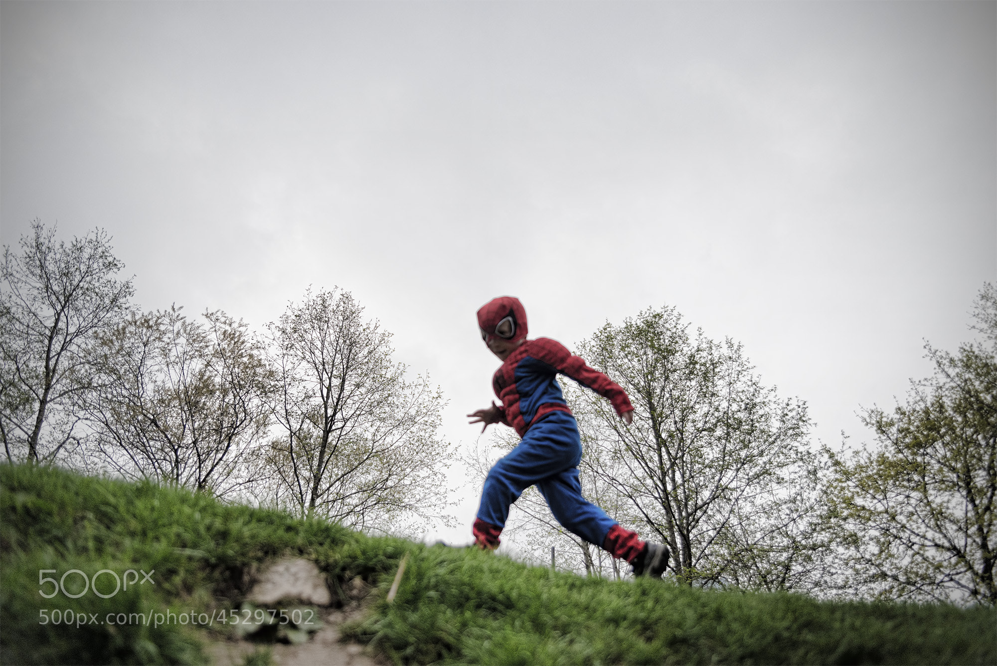 Photograph Spidey on the Go by Andrew Smith on 500px