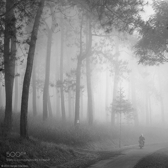 Photograph Into Thin Air by Hengki Koentjoro on 500px