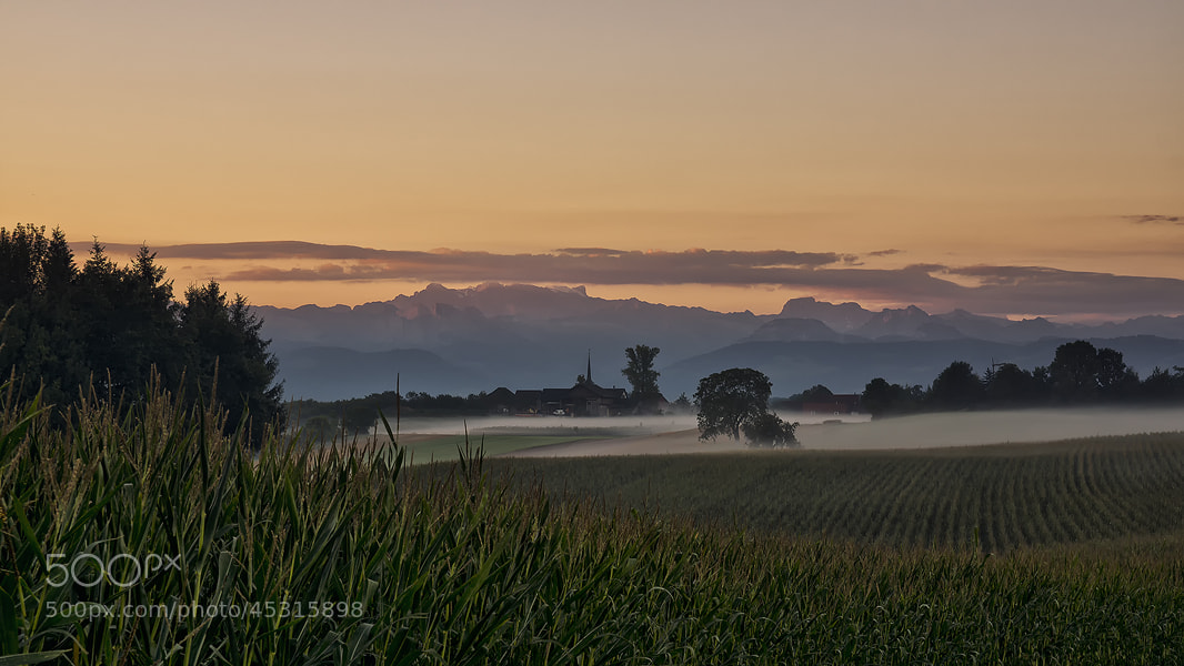 Photograph morning colours by Sandra Löber on 500px