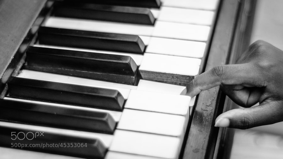 Play Me a tune by gevon  servo  on 500px.com
