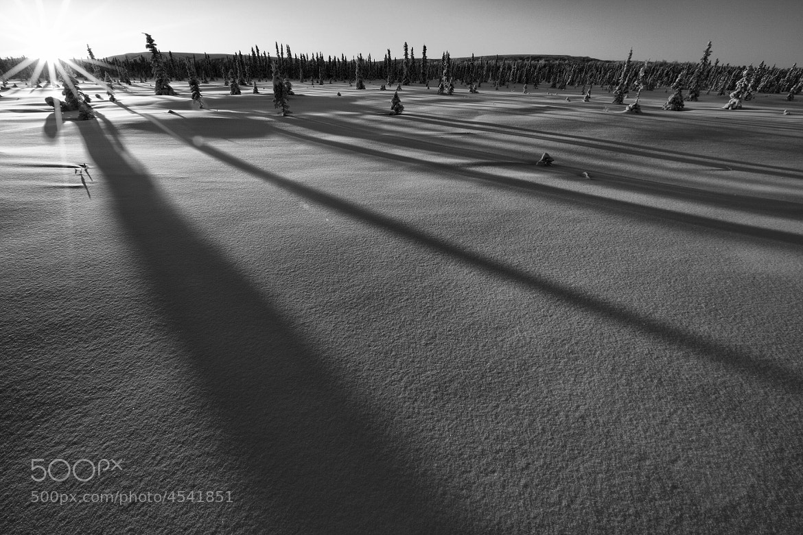 Photograph Winter  Shadows by Ron Perkins on 500px