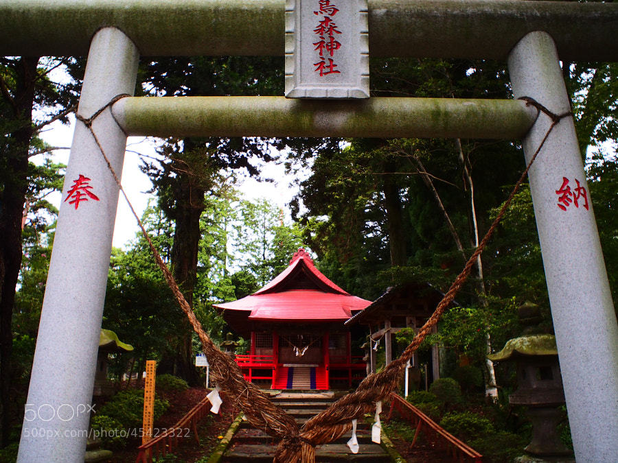 Shinto Shrine by Masatoshi Seki on 500px.com