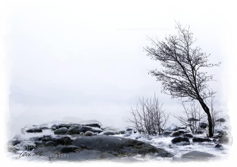 Photograph Winter Seashore by Olli Malmivaara on 500px