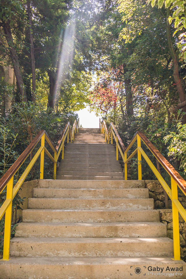 Photograph Stairs to Enlightenment by Gaby Awad on 500px
