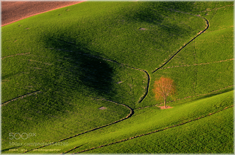 Photograph Last ray of light by Giuliano Mangani on 500px