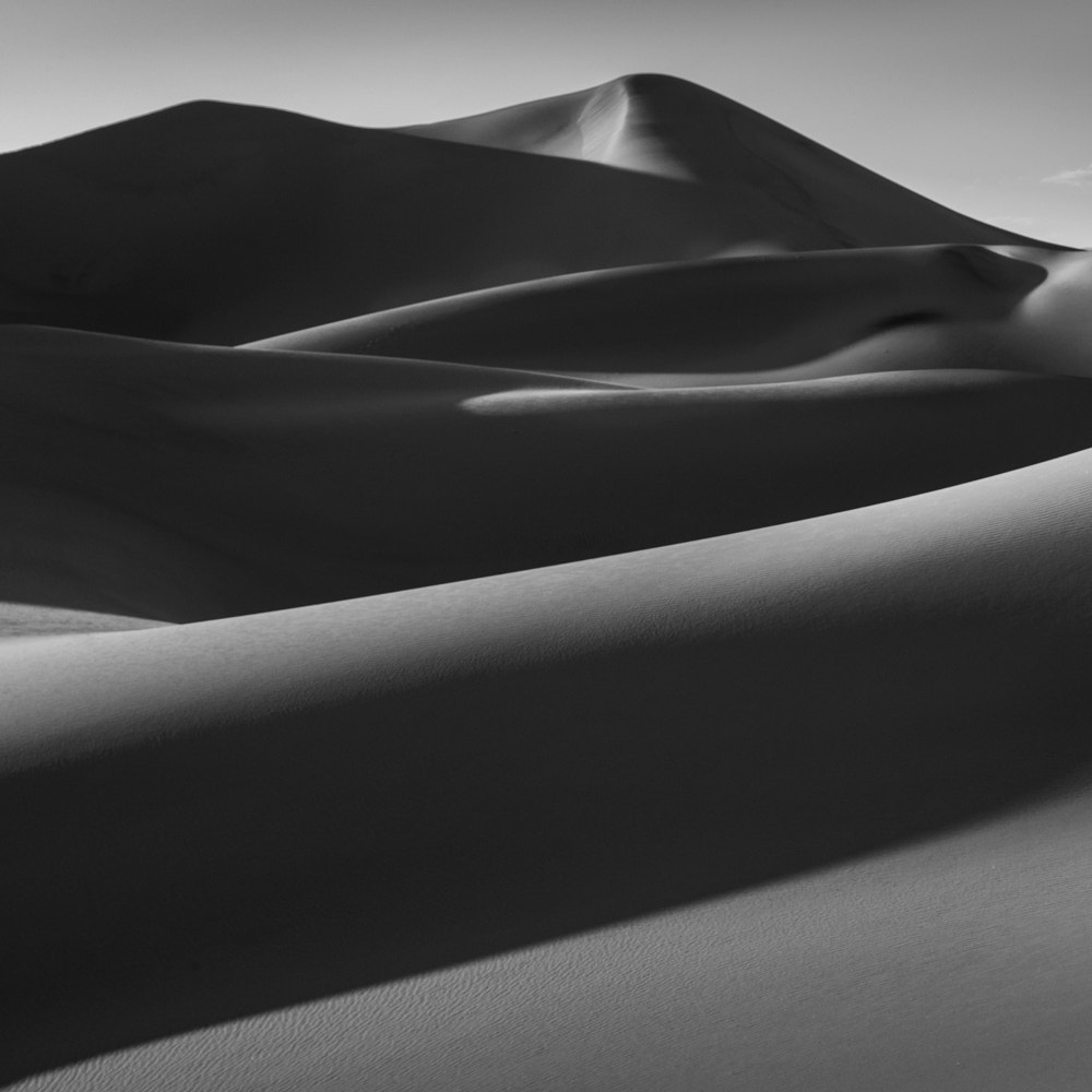 Photograph Sand by Billy Currie on 500px