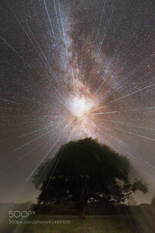 Photograph 新しい輝き by hirosima munetaka on 500px