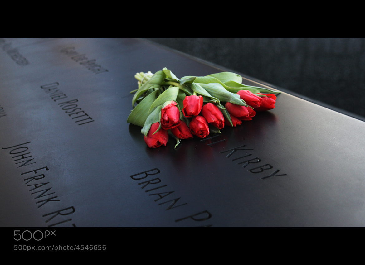 Photograph Roses - 9/11 Memorial by Adam Galey on 500px