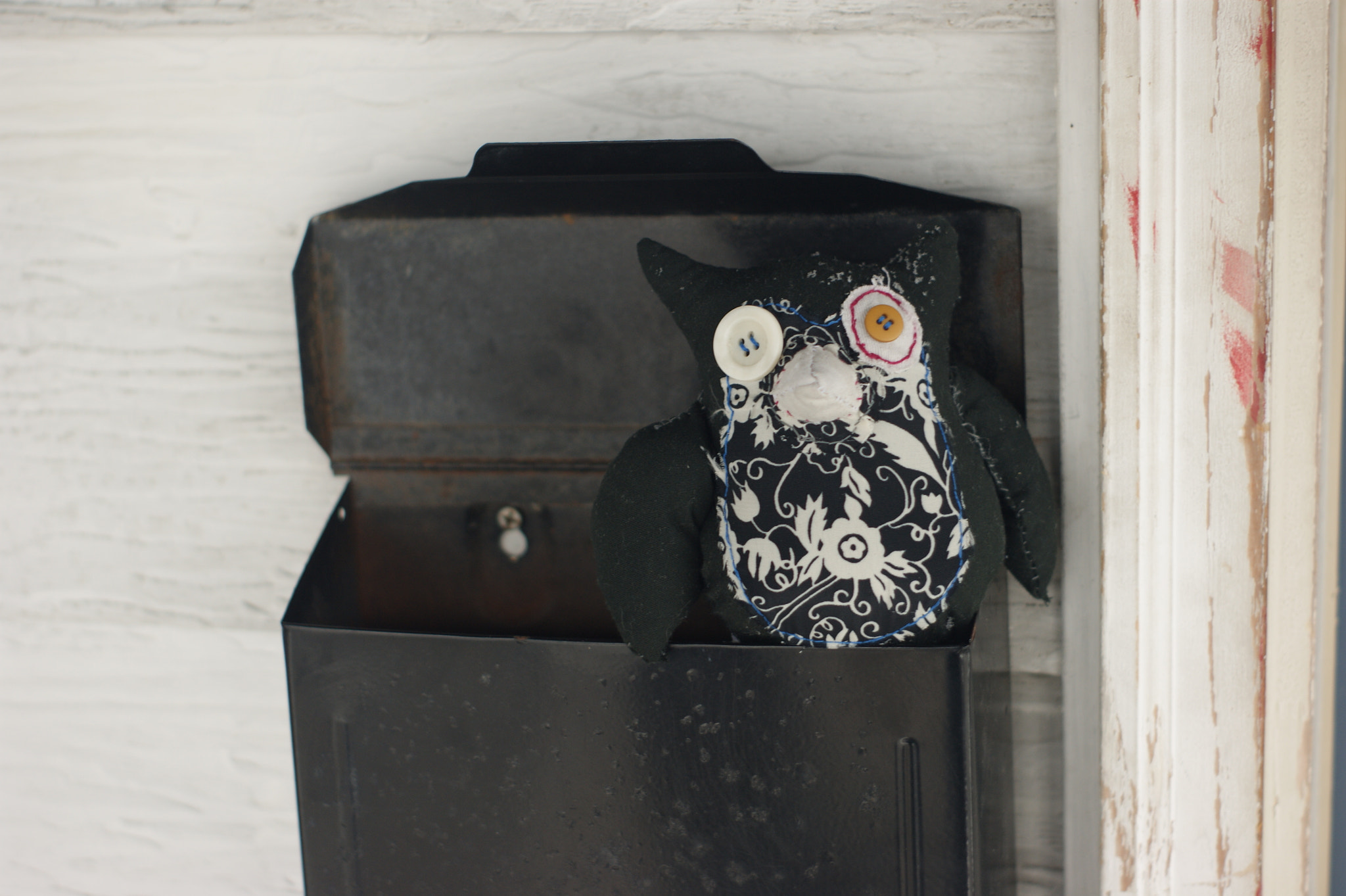 Photograph Owl Sitting in Mail Box by Kurt Morrow on 500px