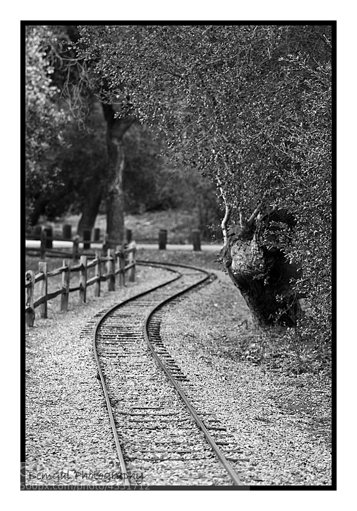 Photograph The Journey Ahead by Raghu Bemgal on 500px