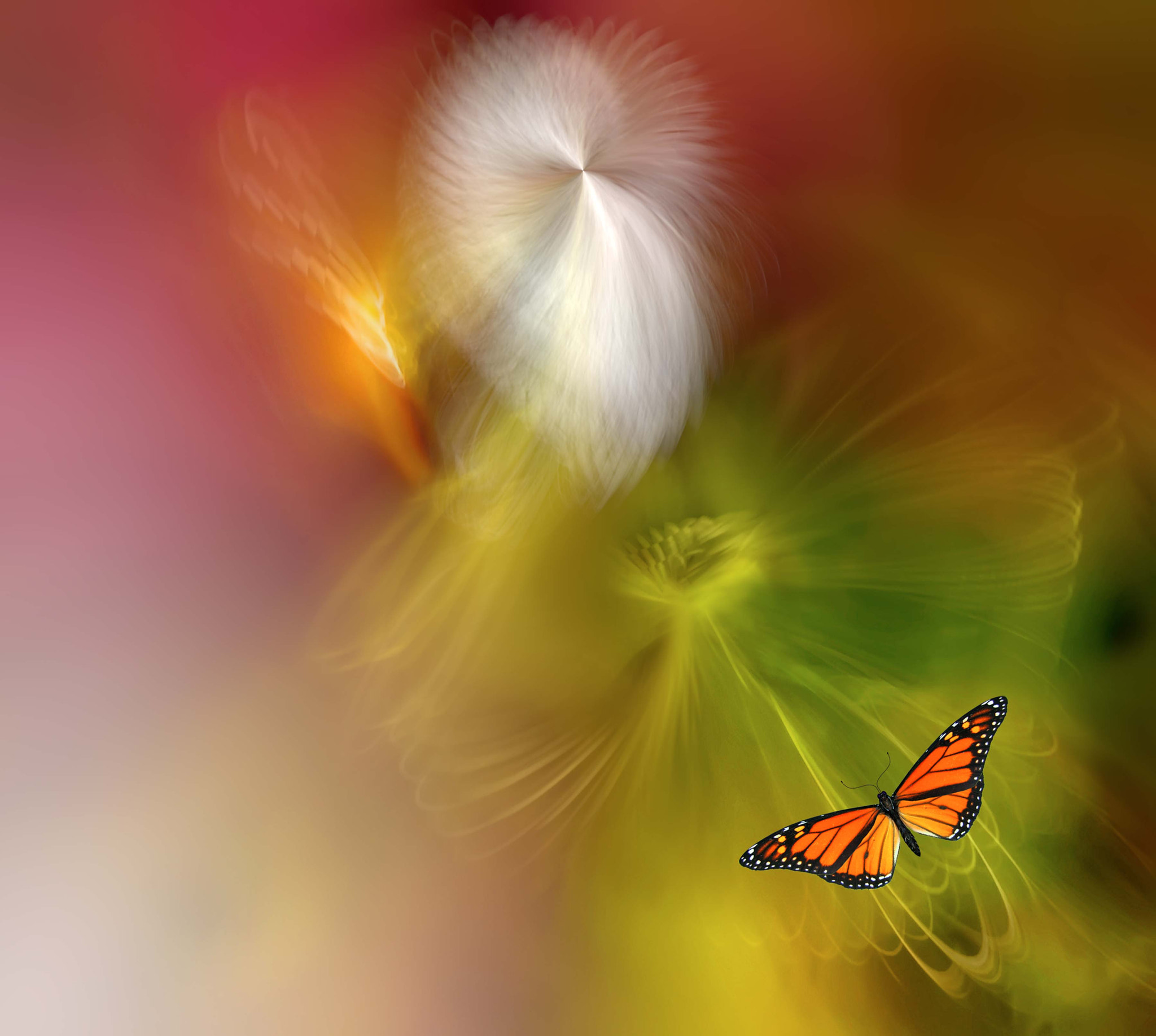 Photograph Ascension by Josep Sumalla on 500px