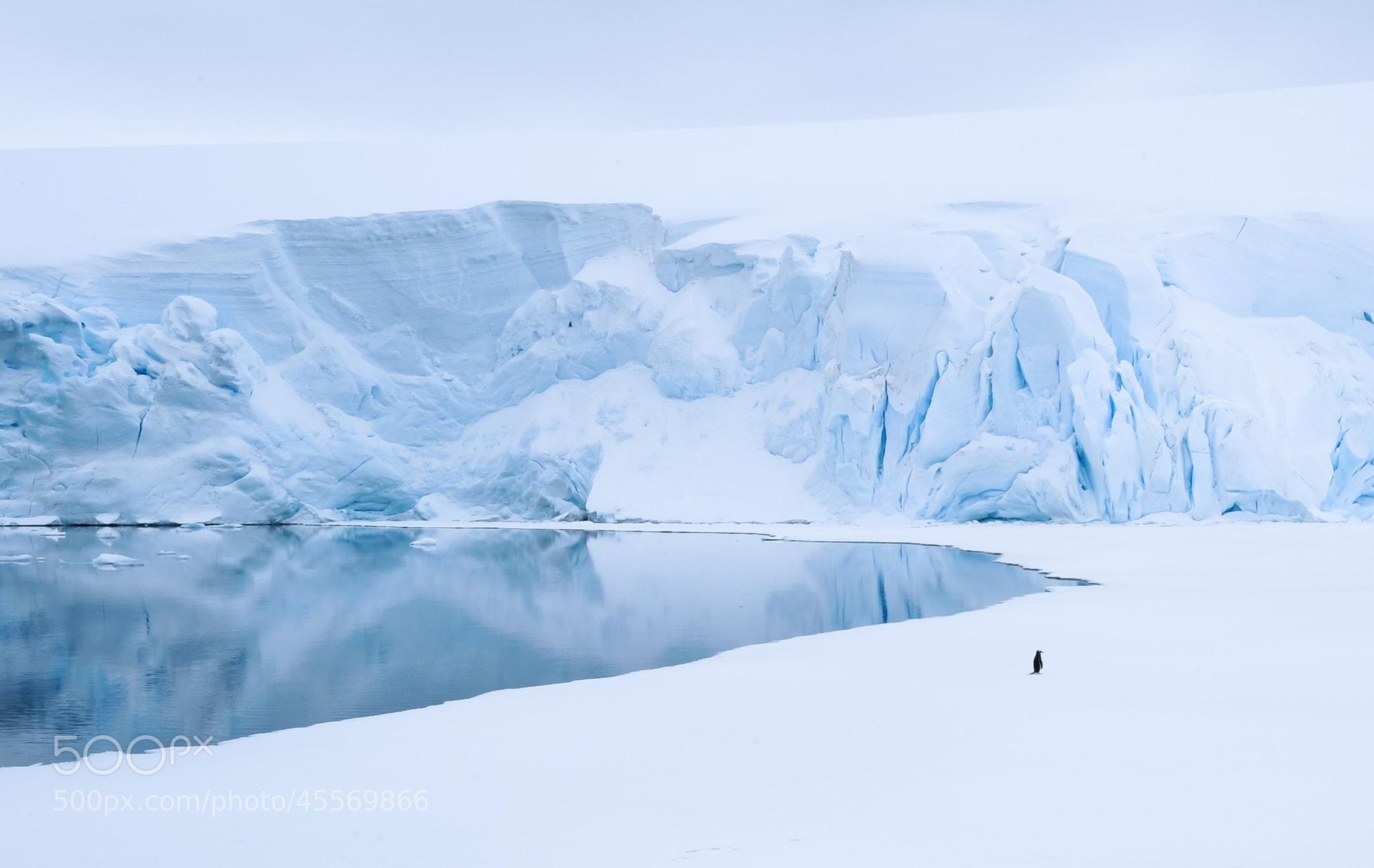 Photograph Lonely by Jørn Allan Pedersen on 500px