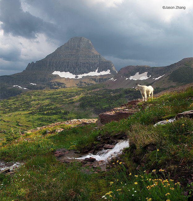 Photograph Glacier National Park, MT by Jason Zhang on 500px