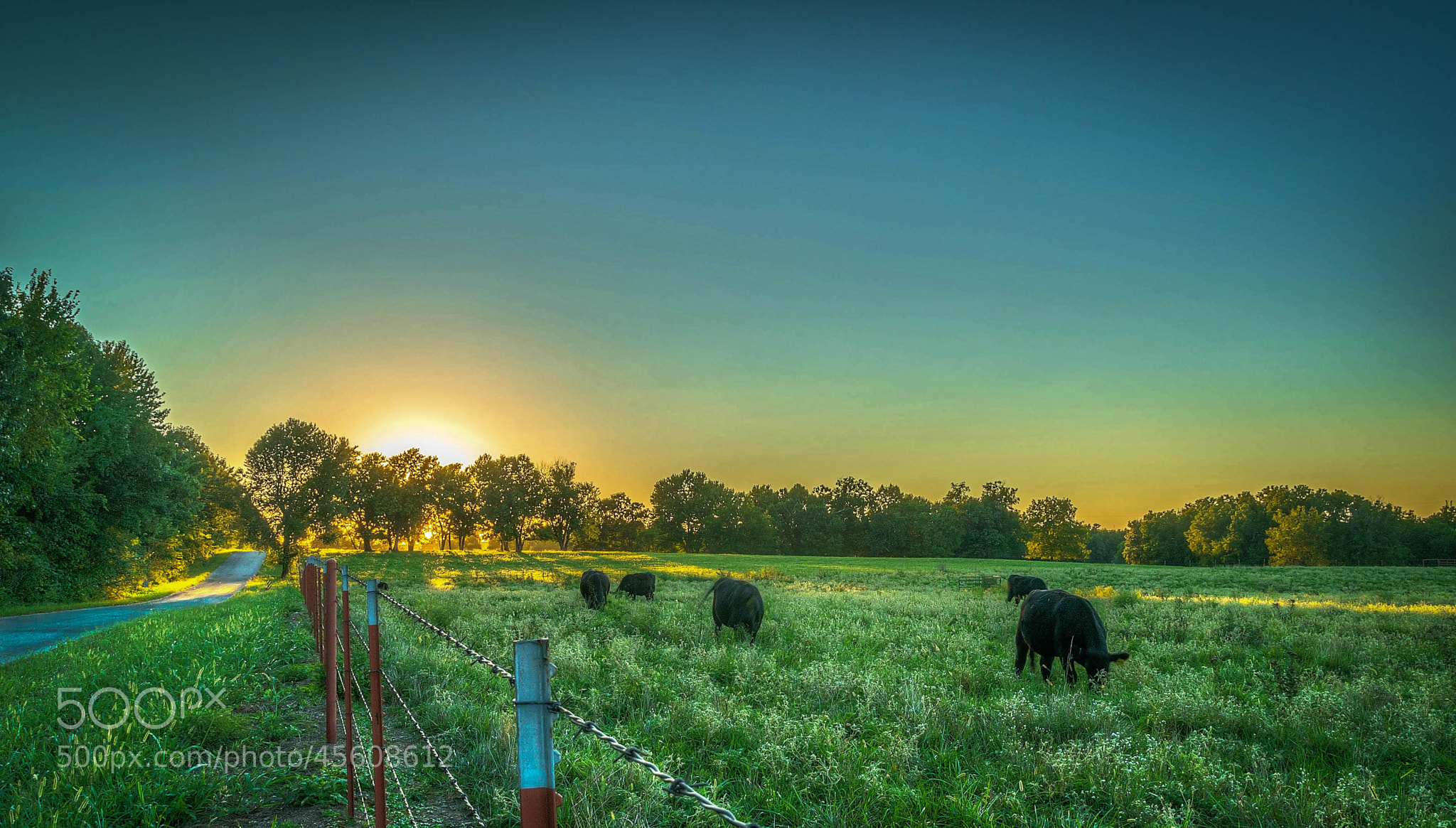 Photograph Out to Pasture by Jerry Dean on 500px