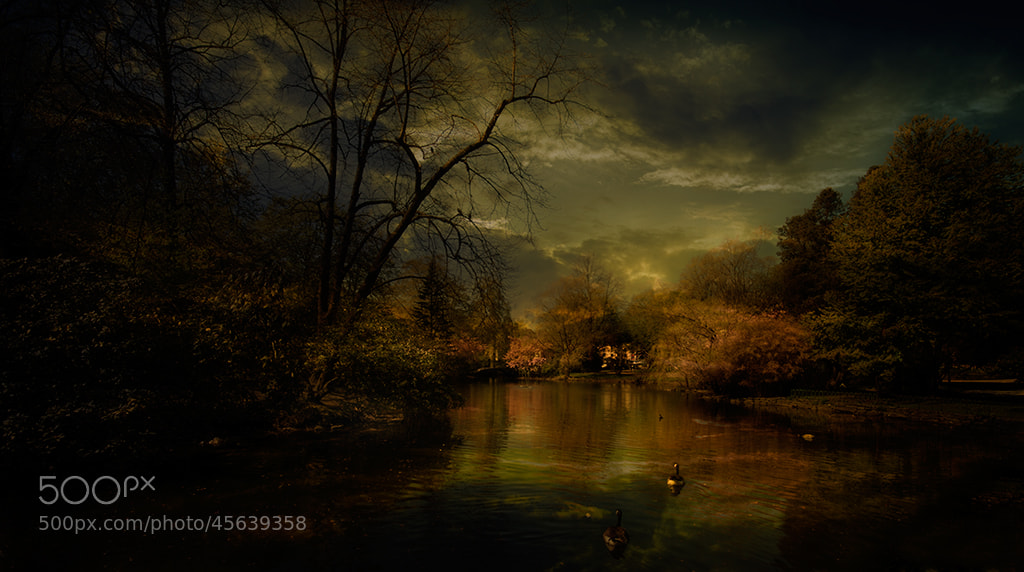 Photograph In a Dark hour by Terje Nicolaysen on 500px