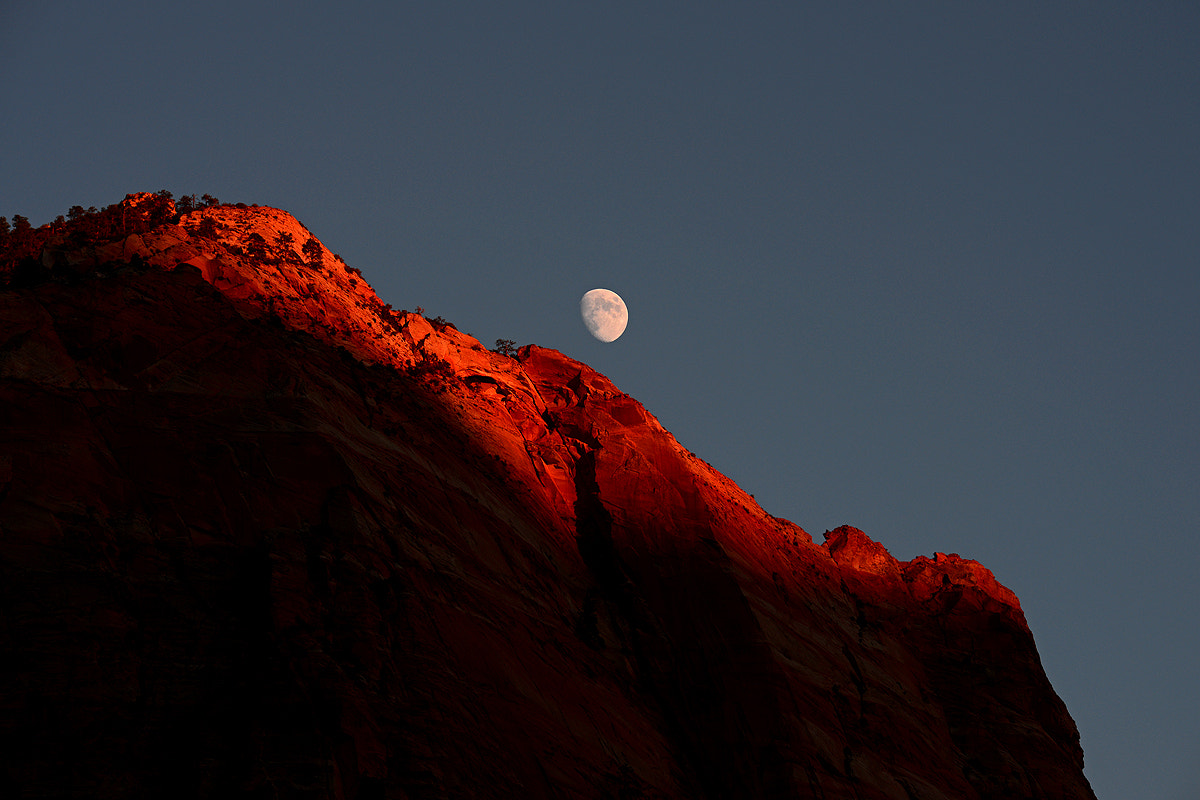 Photograph Zion Moon by Michael Hubrich on 500px