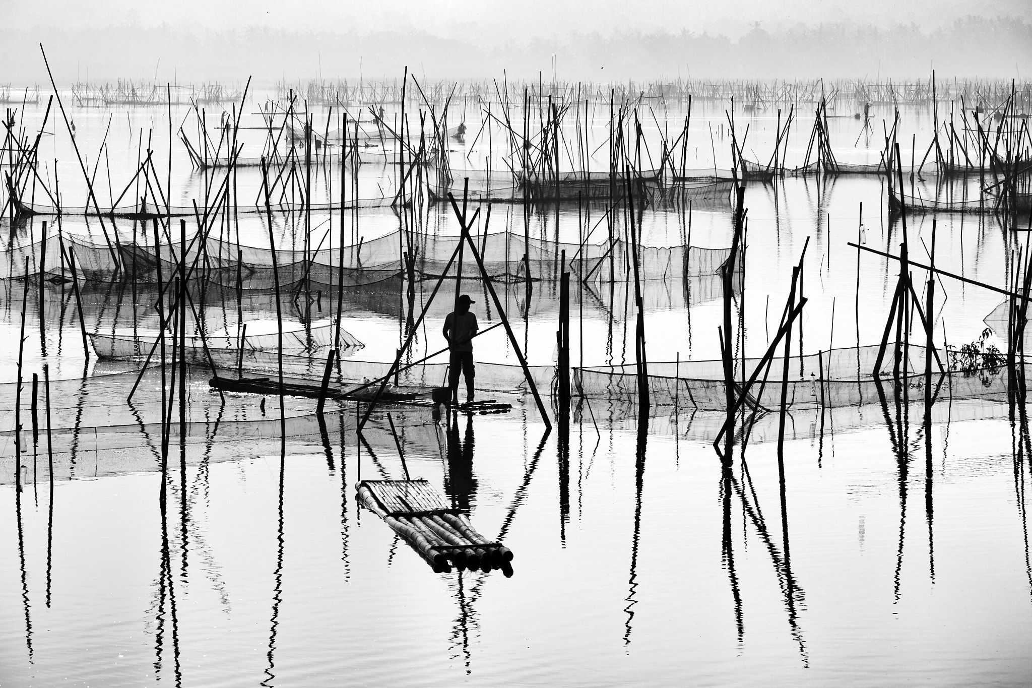 Photograph Morning at the swamp by Bimo Pradityo on 500px