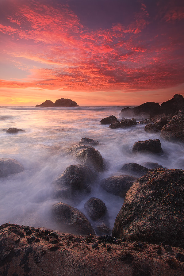 Photograph Vertical Sunset by Alan Chan on 500px