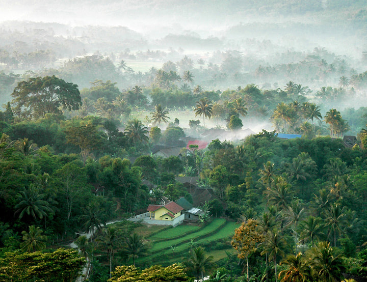 Photograph MORNING HARMONY by Edi Wibowo on 500px