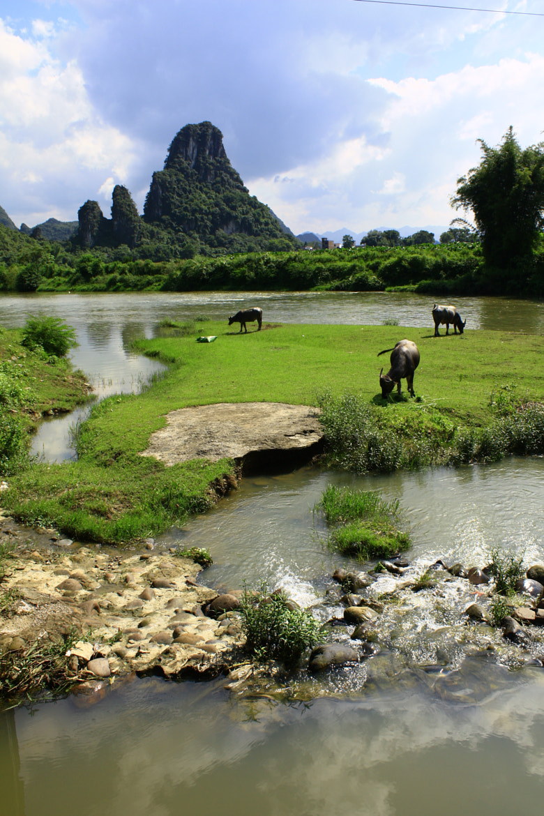 Photograph Yangshuo, Guilin by Warot Suandork on 500px