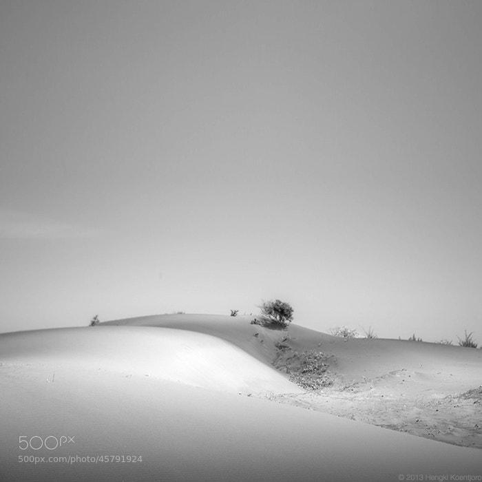 Photograph Gumuk Dunes by Hengki Koentjoro on 500px