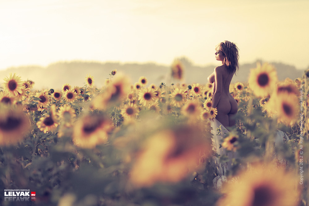 Photograph Sunflowers by Konstantin Lelyak on 500px