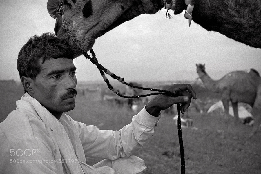 Photograph affection | pushkar by Soumya Bandyopadhyay on 500px