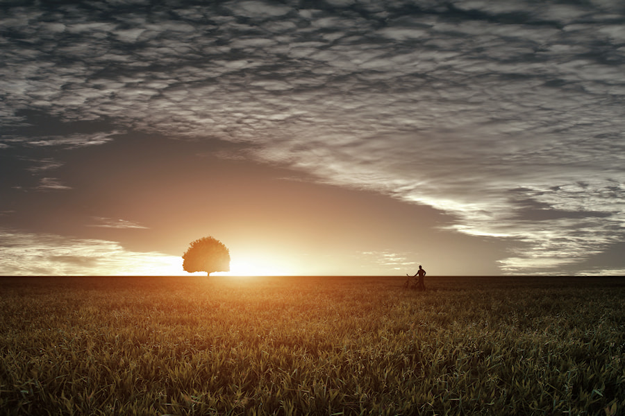 Photograph Staring at the Sun by Carlos Gotay on 500px