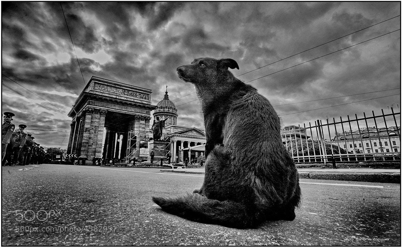 Photograph Про возраст by Валентин Илюшин on 500px