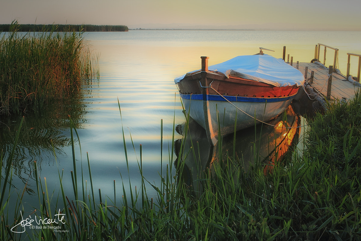Photograph Capvespre a l'albufera by Jose Vicente on 500px