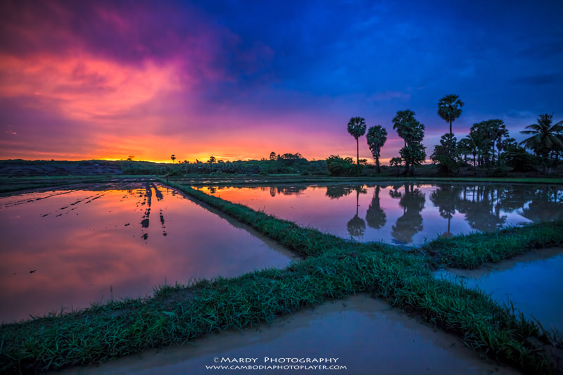 Photograph X sunset! by Mardy Suong Photography on 500px
