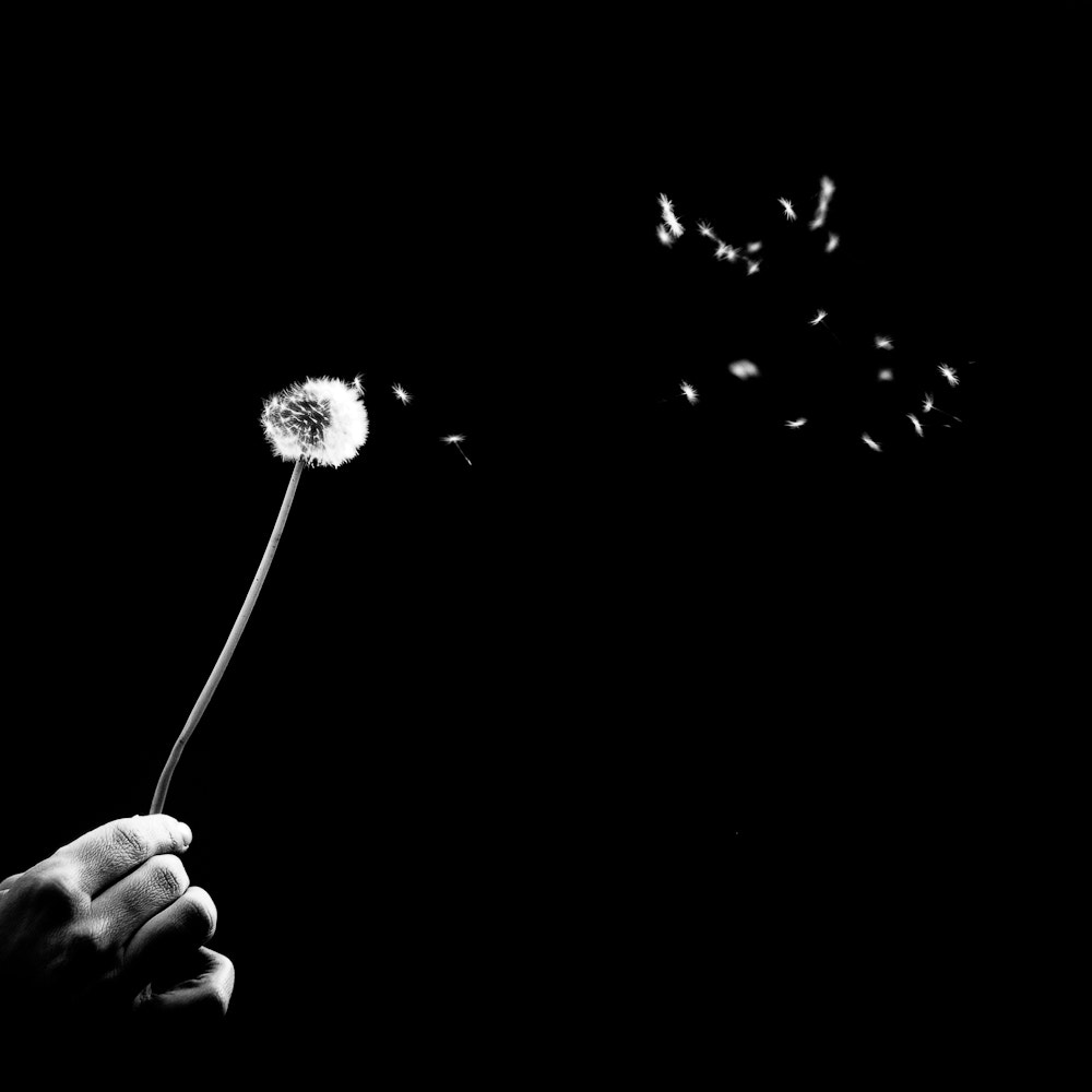 Photograph Le souffle by Benoit COURTI on 500px