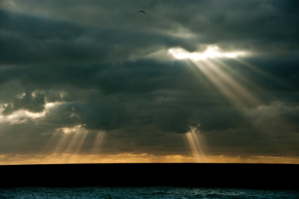 Photograph Heaven's Light by Donald Davis on 500px